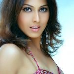swapnanchya-palikadale-actress-star-pravah