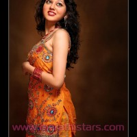 Ketaki Chitale Marathi Tv Serial Actress