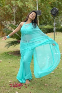 Suvarna kale Marathi Actress in Saree