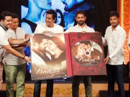 Pind Daan Music Launch