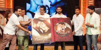 Pind Daan Music Launch