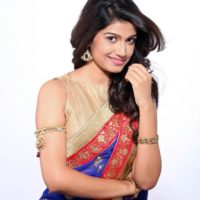 Rasika Sunil Saree Photos