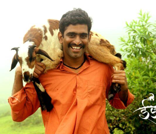 Sandeep Pathak Idak Zee5